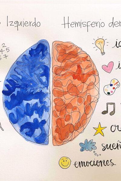 Cerebro y creatividad